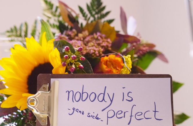 nobody-is-perfect
